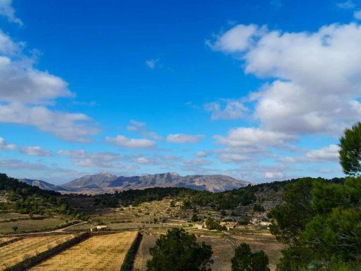 Spanish Photography